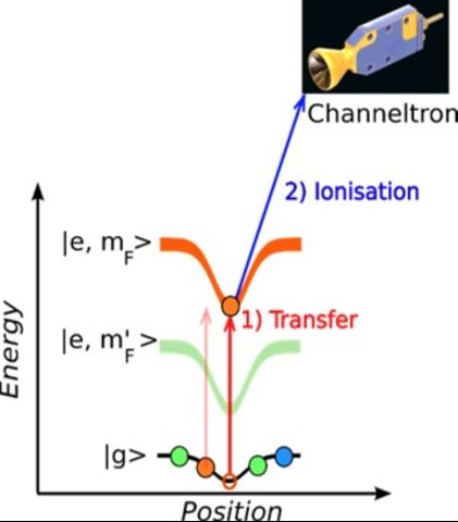 Single-site, spin-selective addressing, as a probe of magnetisation in a lattice...